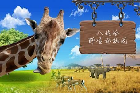 【八达岭野生动物园一日游】